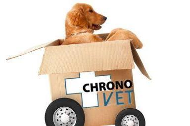a_Chrono_chien-e1498061336979.jpg